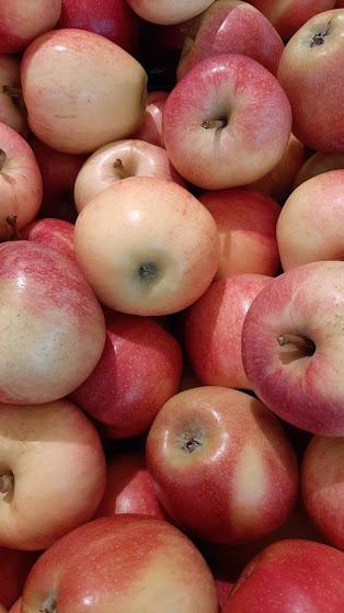 omenapektiini-ihonhoidossa