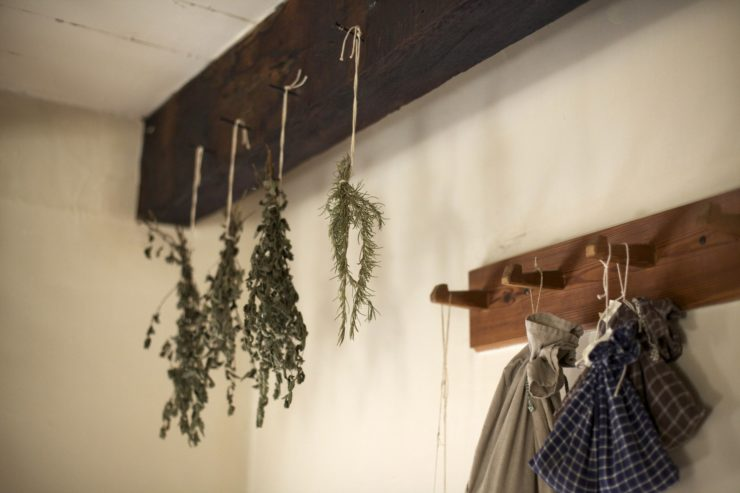 drying-of-herbs