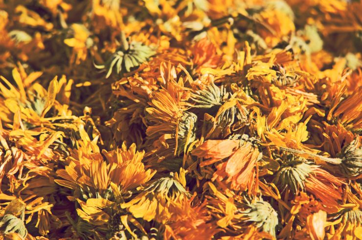 how-to-prepare-a-herbal-infusion